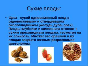 Сухие плоды: Орех - сухой односемянный плод с одревесневшим и отвердевшим око