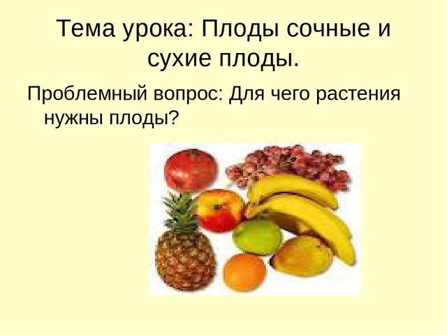 Тема урока: Плоды сочные и сухие плоды. Проблемный вопрос: Для чего растения...