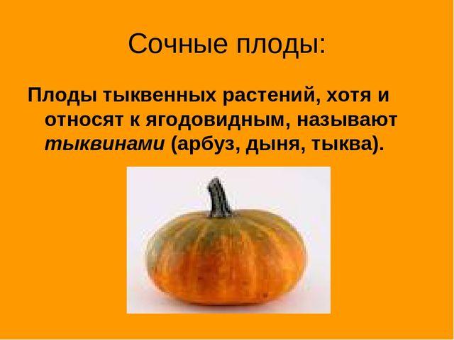 Сочные плоды: Плоды тыквенных растений, хотя и относят к ягодовидным, называю...