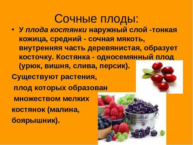Сочные плоды: У плода костянки наружный слой -тонкая кожица, средний - сочная...