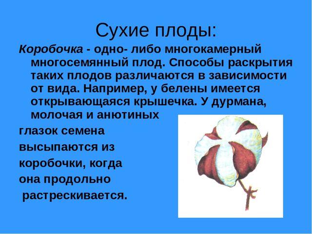 Сухие плоды: Коробочка - одно- либо многокамерный многосемянный плод. Способы...