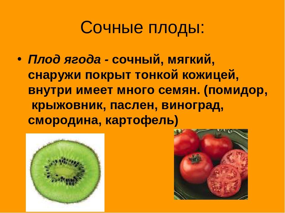 Сочные плоды: Плод ягода - сочный, мягкий, снаружи покрыт тонкой кожицей, вну...
