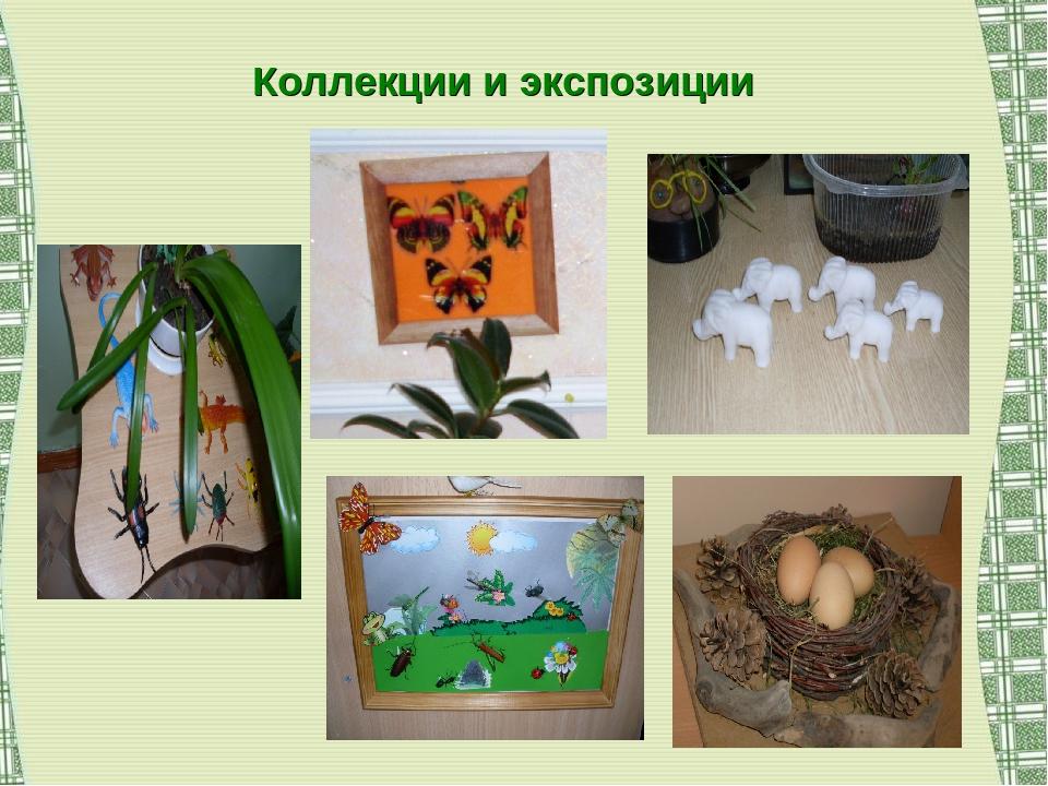 Коллекции и экспозиции