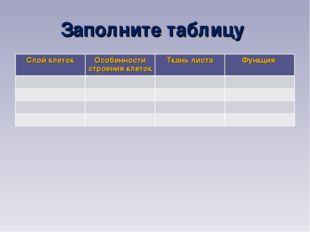 Заполните таблицу Слой клетокОсобенности строения клетокТкань листаФункция