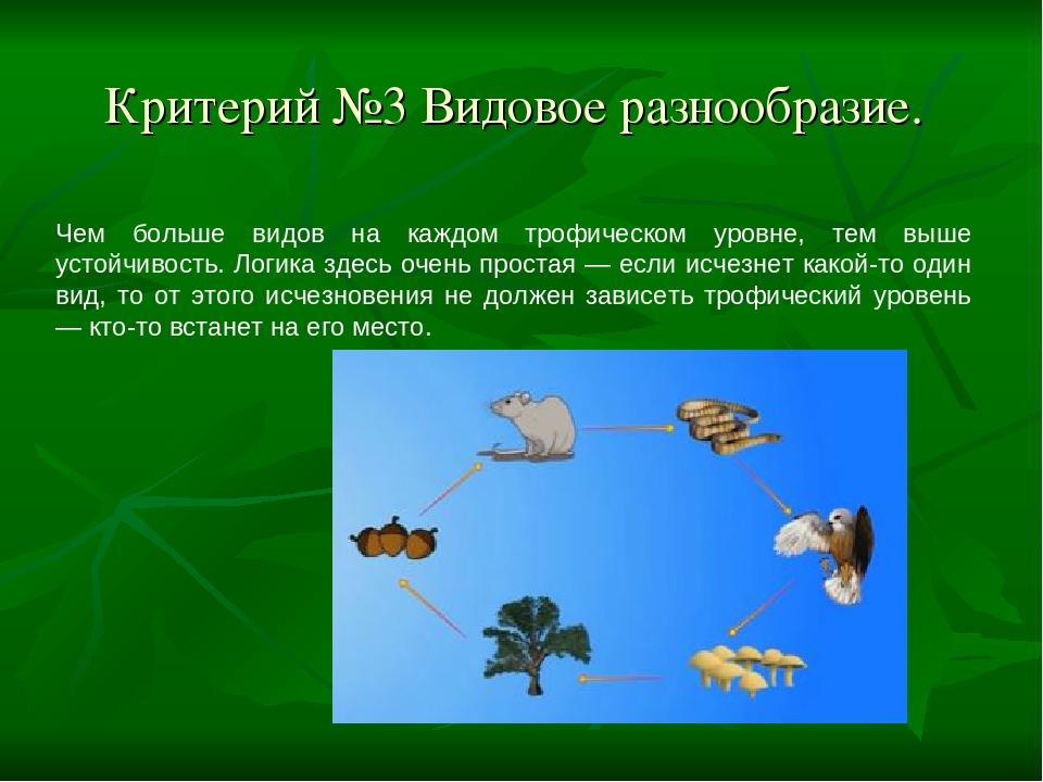 Критерий №3 Видовое разнообразие. Чем больше видов на каждом трофическом уров...