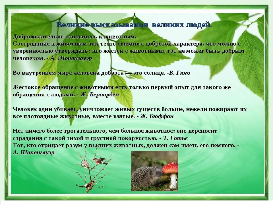 картинки по экологии с выражением взглянем жизни