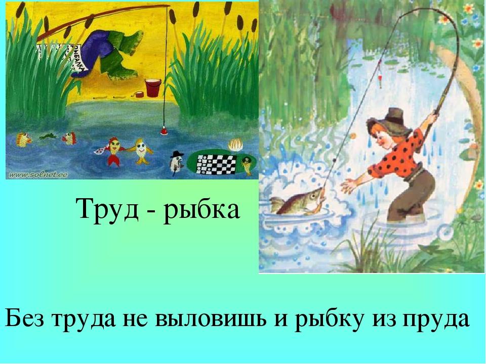 Картинка без труда не вынешь рыбку из пруда