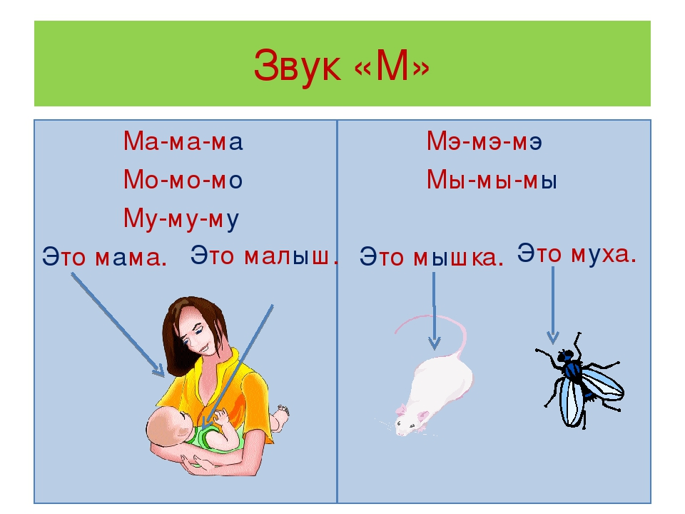 Звук «М» Ма-ма-ма Мо-мо-мо Му-му-му Это мама. Мэ-мэ-мэ Мы-мы-мы Это мышка. Эт...
