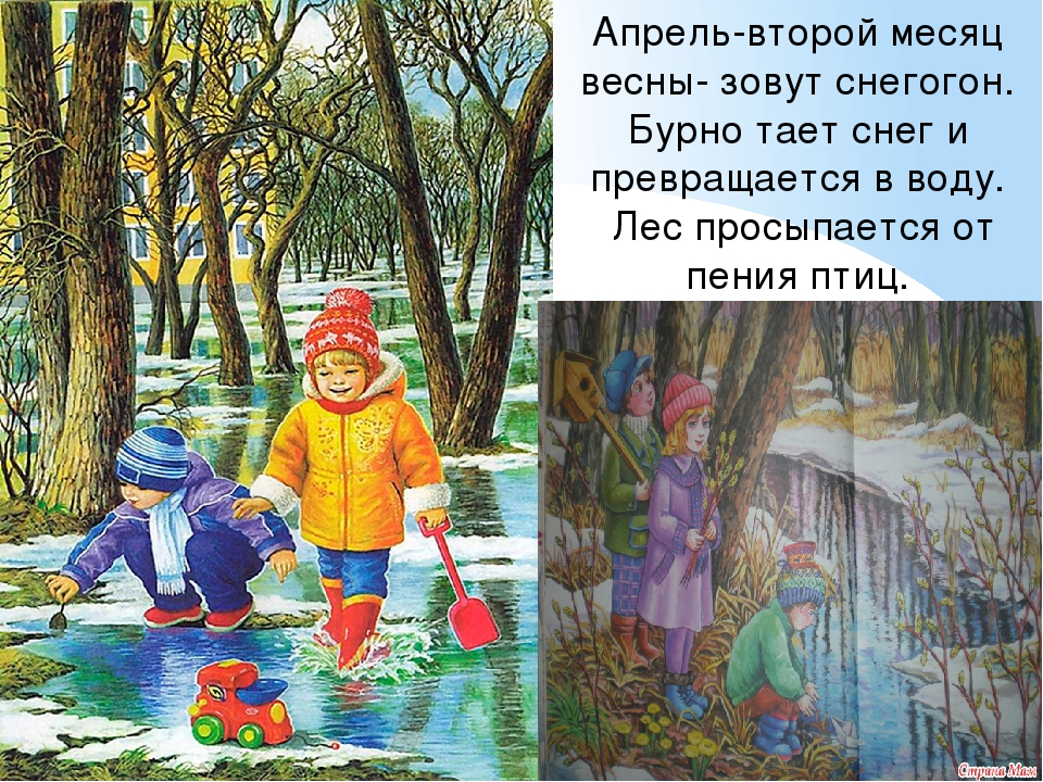 Прикольные картинки, открытки со вторым месяцем весны