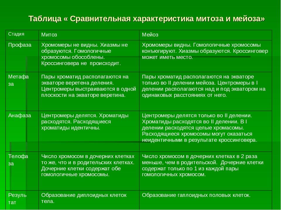 Таблица « Сравнительная характеристика митоза и мейоза» Стадия МитозМейоз...