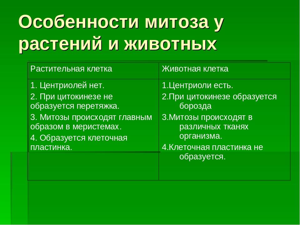 Особенности митоза у растений и животных Растительная клеткаЖивотная клетка...