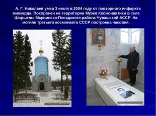 А. Г. Николаев умер 3 июля в 2004 году от повторного инфаркта миокарда. Похо