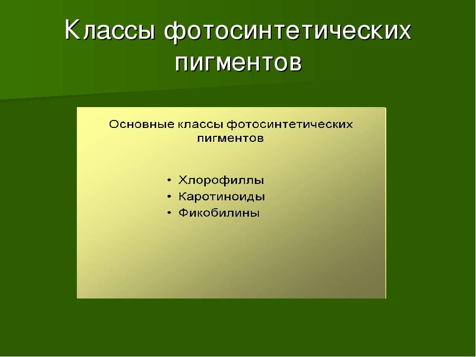 Классы фотосинтетических пигментов