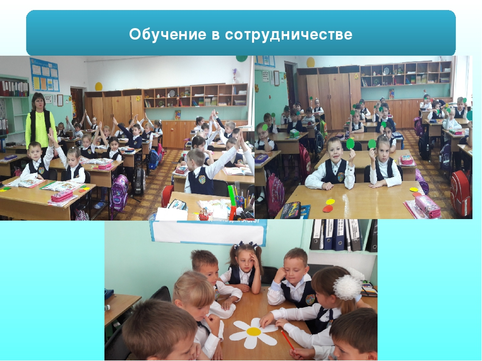 Обучение в сотрудничестве