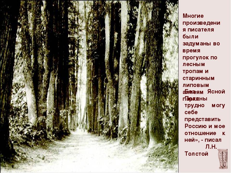 Многие произведения писателя были задуманы во время прогулок по лесным тропа...