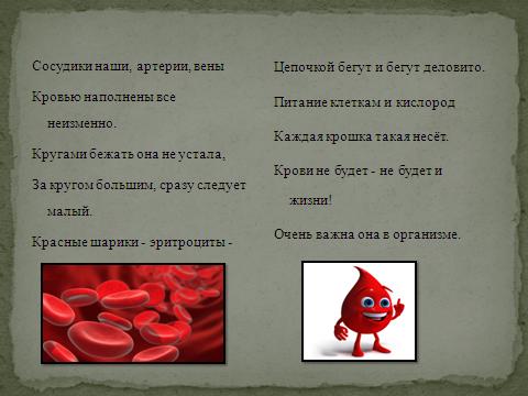 Зеленая кровь доклад 4 цвета крови 2792