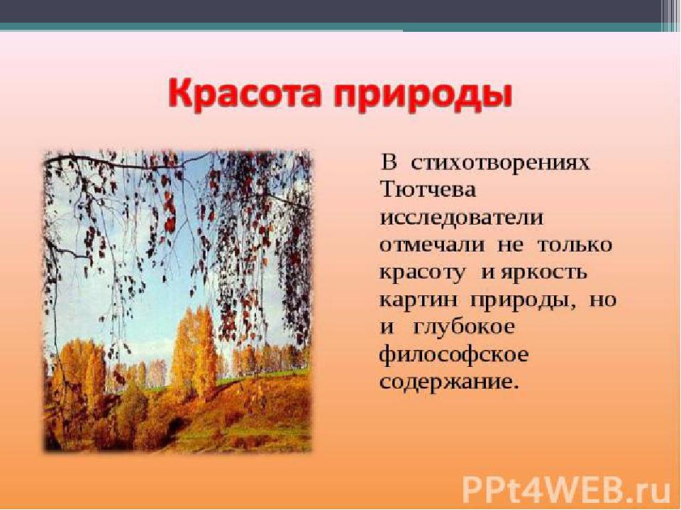 Поэзия природы