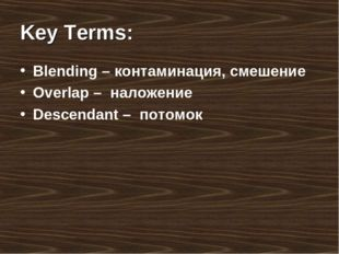 Key Terms: Blending – контаминация, смешение Overlap – наложение Descendant –