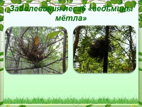 hello_html_m52035a41.png