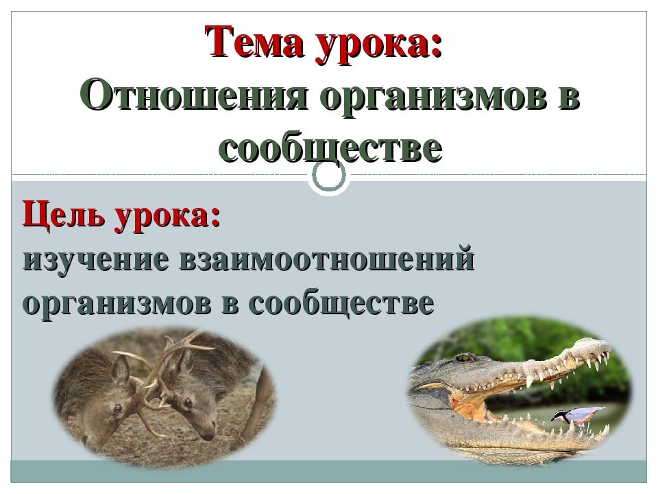 Тема урока: Отношения организмов в сообществе Цель урока: изучение взаимоотно...
