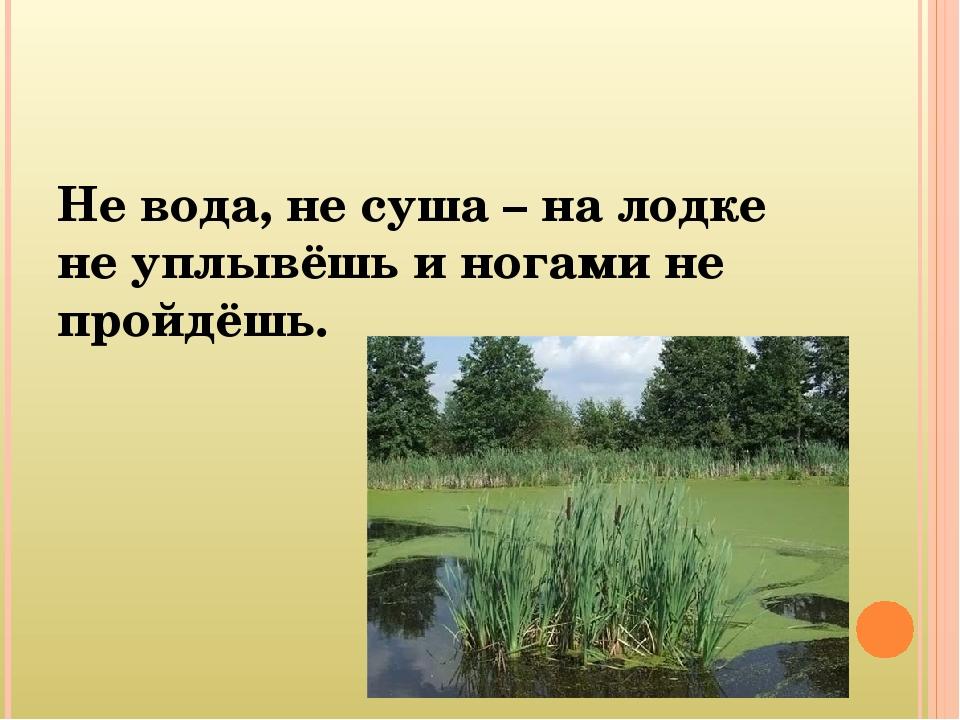 не вода не суша на лодке не уплывешь и ногами не пройдешь что это такое