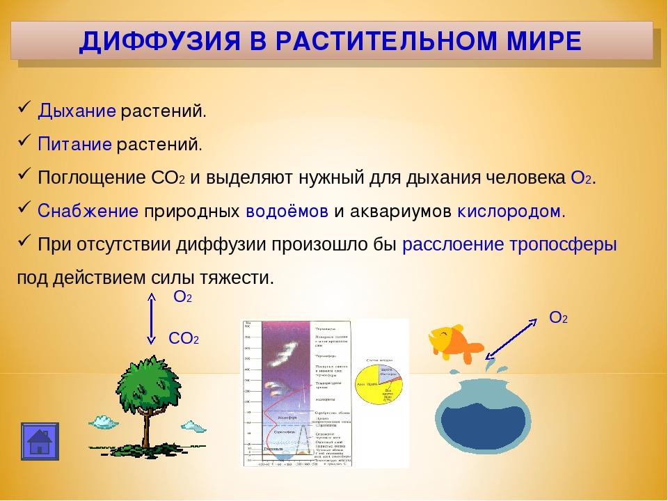 картинки примеров диффузии