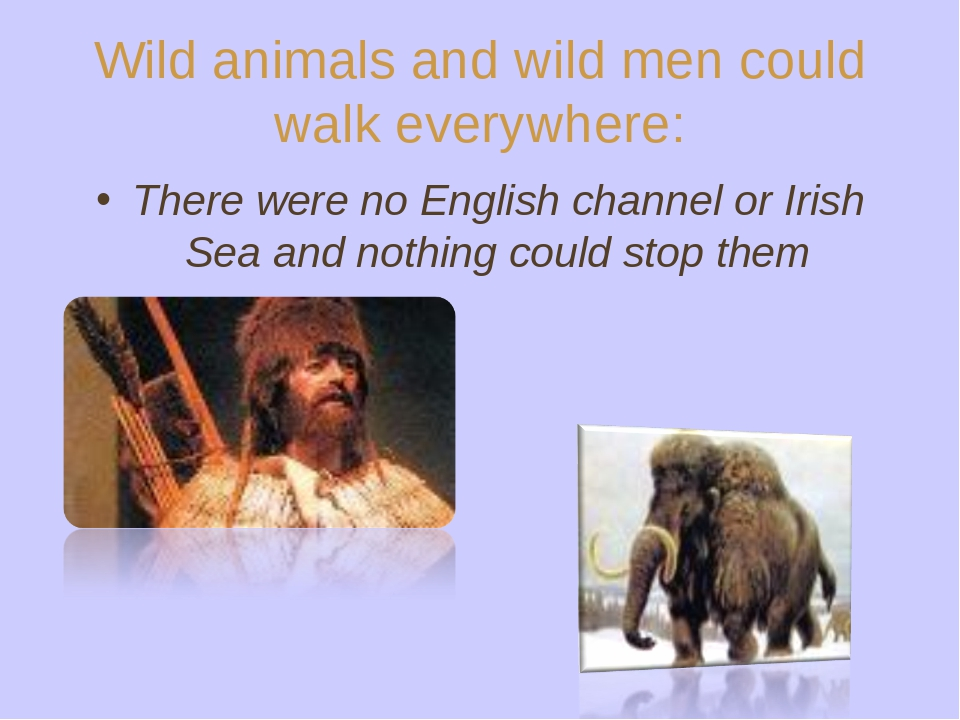 Wild animals and wild men could walk everywhere: There were no English channe...