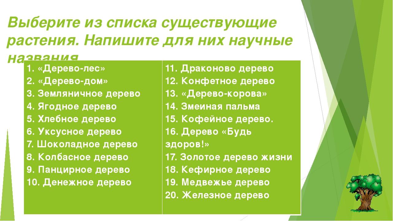 Выберите из списка существующие растения. Напишите для них научные названия....
