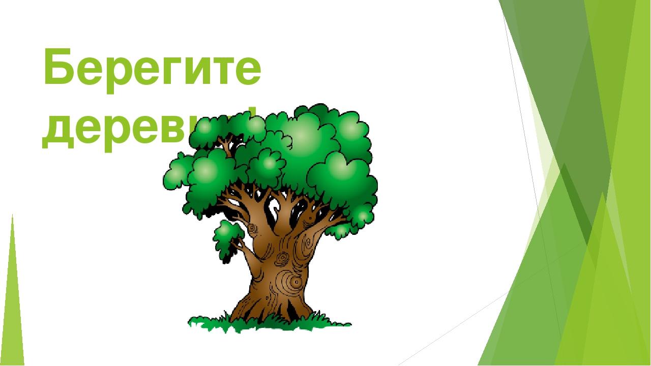 Берегите деревья!