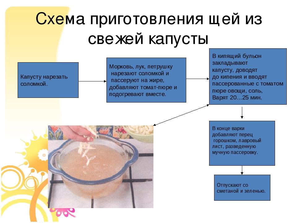 особенности приготовления щи из свежей капусты