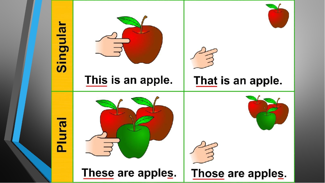 A Brief Overview of English Grammar Useful English