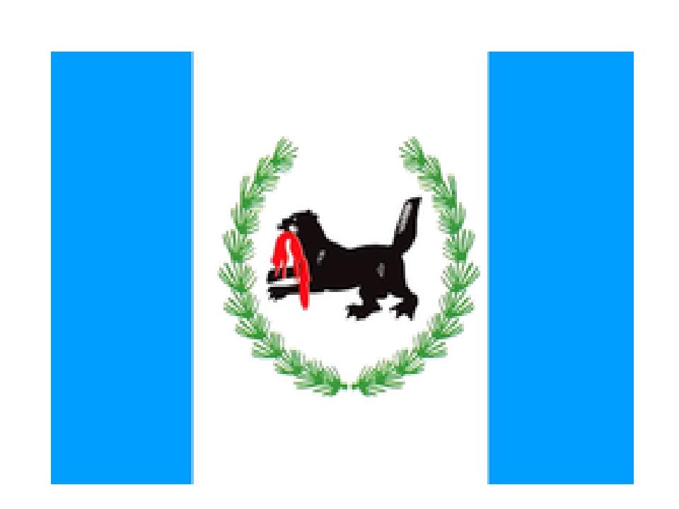 картинки флаг и герб иркутска