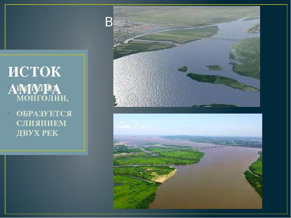 исток реки амур картинки города