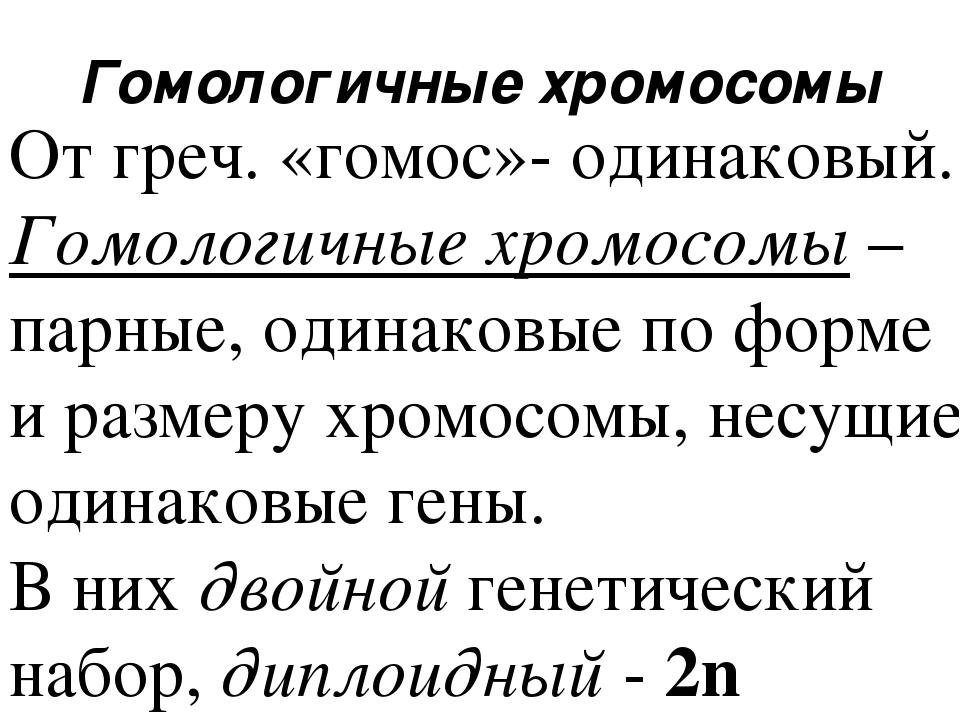 Гомологичные хромосомы От греч. «гомос»- одинаковый. Гомологичные хромосомы –...