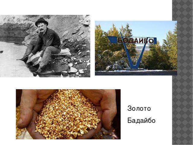 Золото Бадайбо