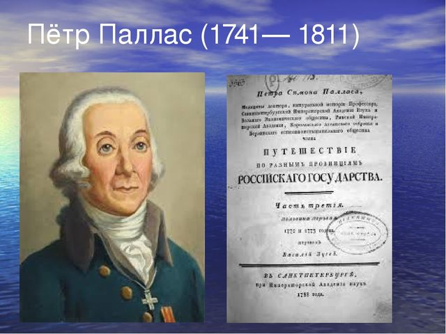 Иоганн Георги (1729—1802)