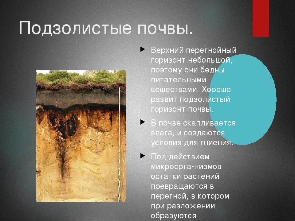 дерново подзолистые почвы белоруссии двухкомнатных квартир (вторички)